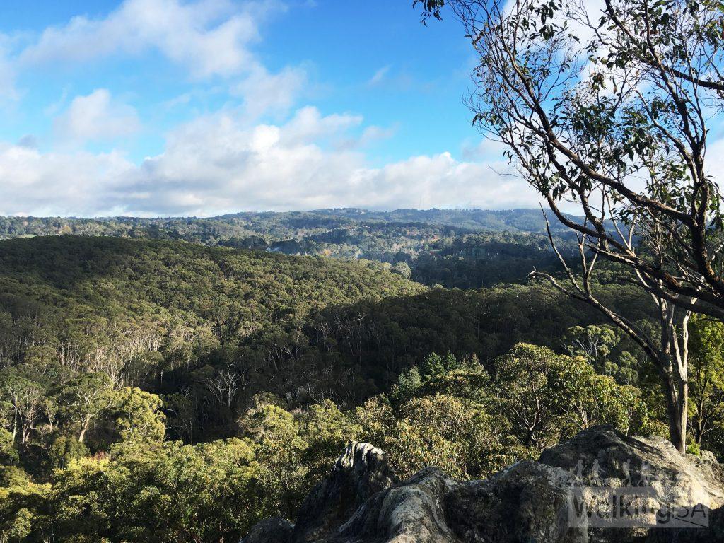 Ridge Trail, Mount George Conservation Park