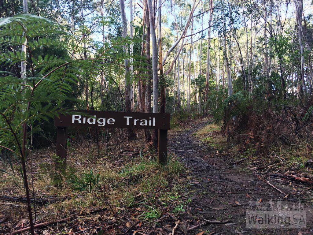 Ridge Trail sign near Candlebark Dam,