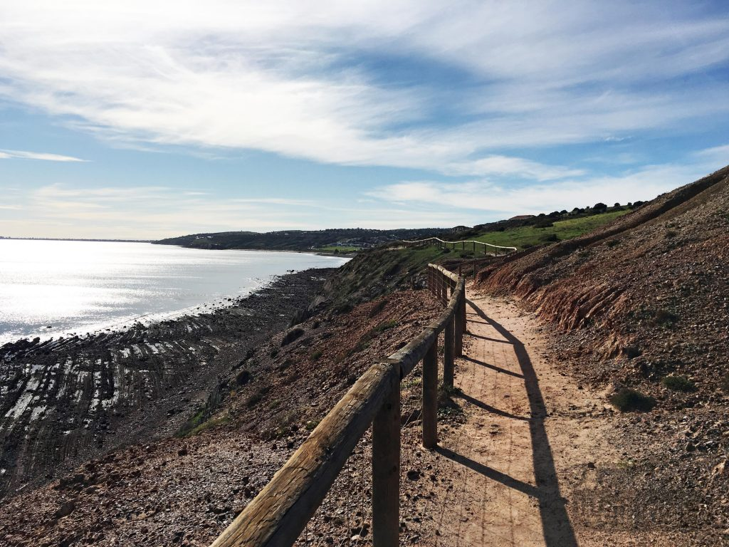 Although the Kauwi Interpretive Walking Trail ends abruptly, you can continue walking along this foot track to Hallett Cove