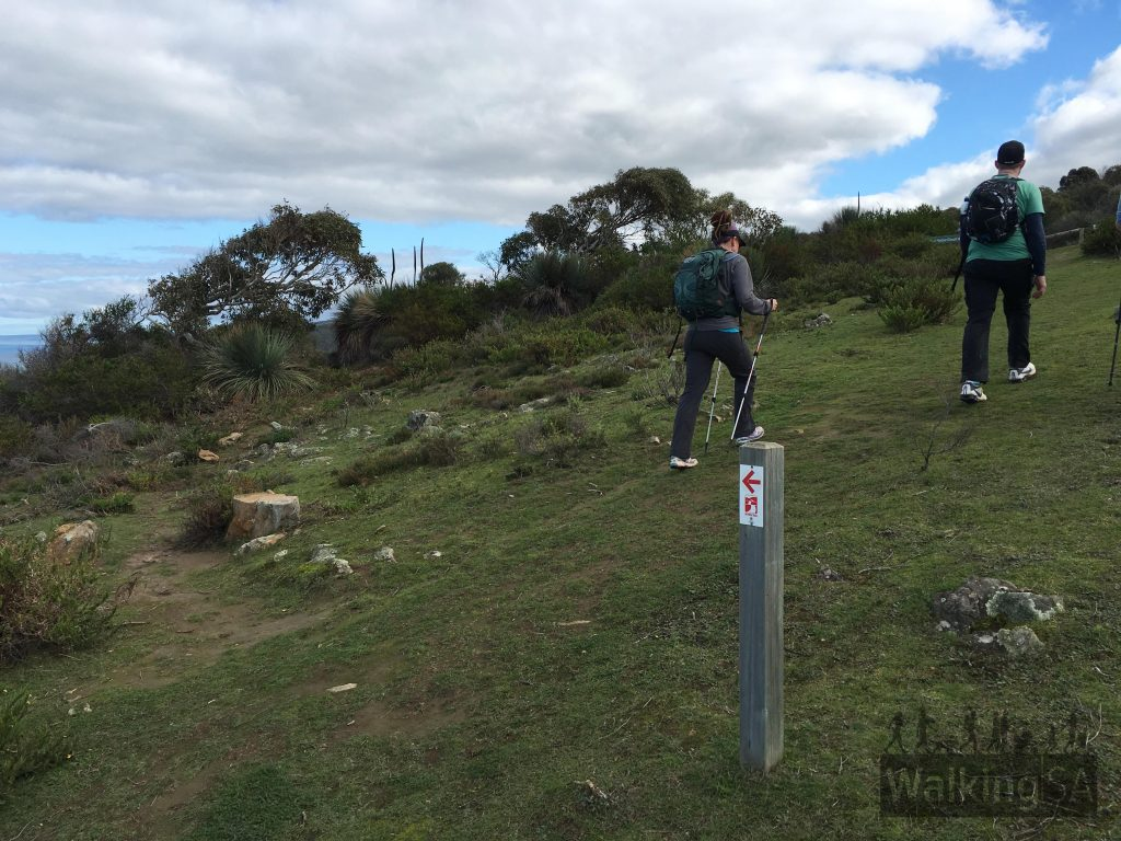 Boat Harbor Circuit hike continue uphill on return trip, or return via Heysen Trail