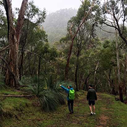 Montacute Conservation Park Hike