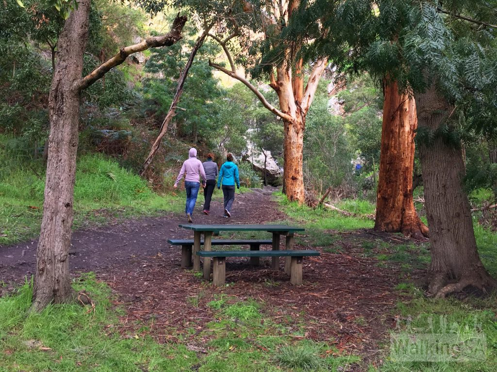 Picnic tables on the walk to Ingala Falls