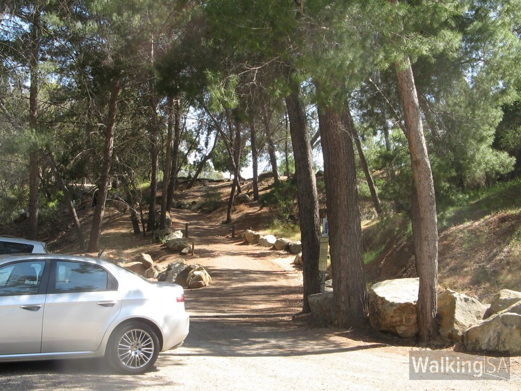 Start from the carpark at Langman Reserve on Waterfall Gully Road