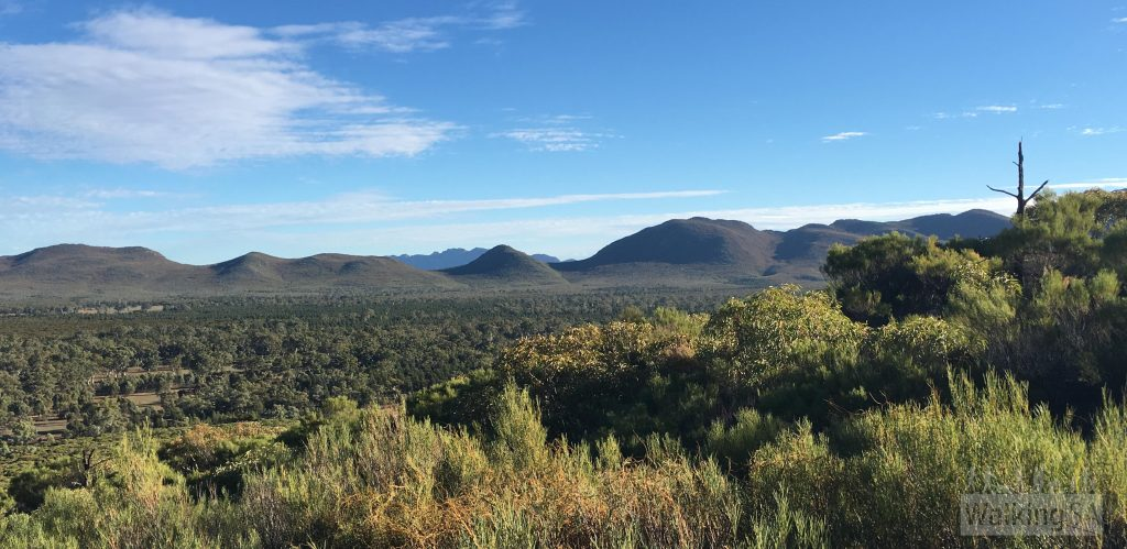 The view inside Wilpena Pound at Wangara Lookout