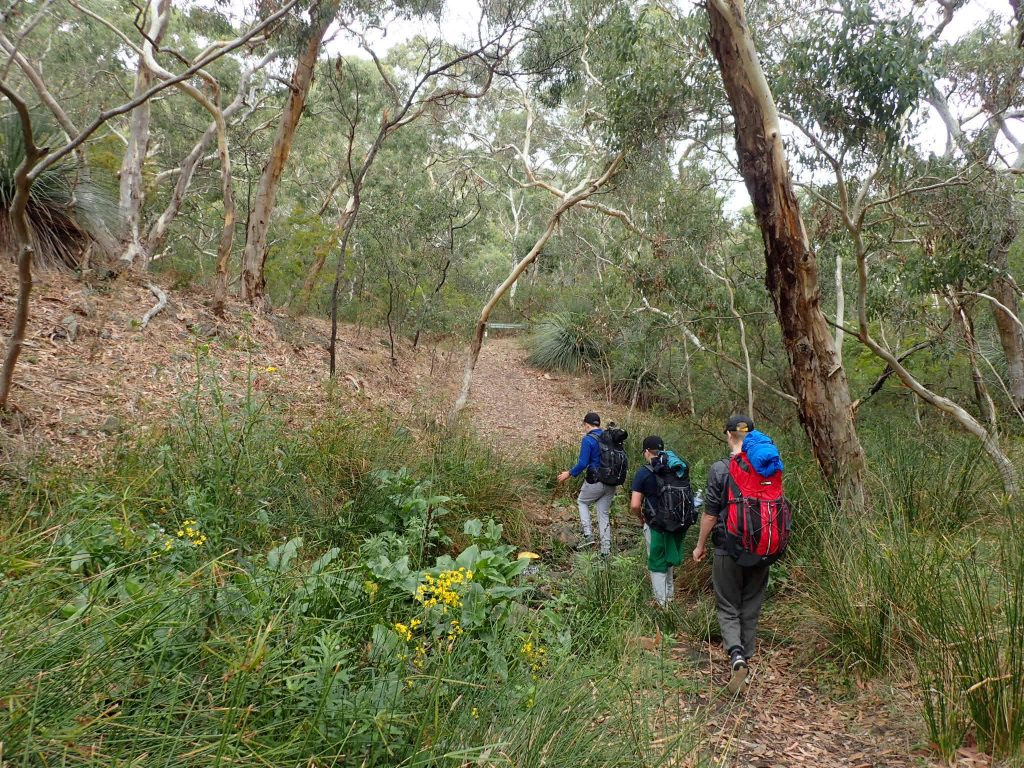Walking from Cobbler Hill to Eagle Waterhole