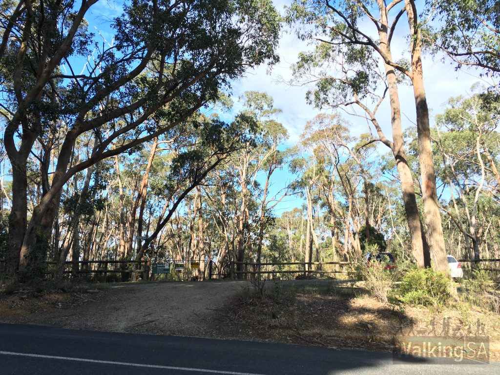 Begin the hike at Gate 2, near 84 Gum Flat Road, Carey Gully. There is a carpark here with space for 5-6 cars.