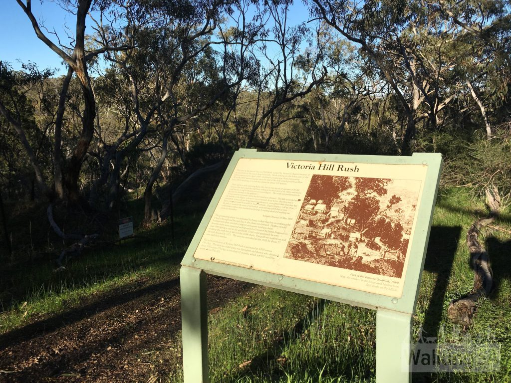 In the very northern section of Para Wirra is the Barossa Goldfields. Explore this old mining area with these informative trail signs.