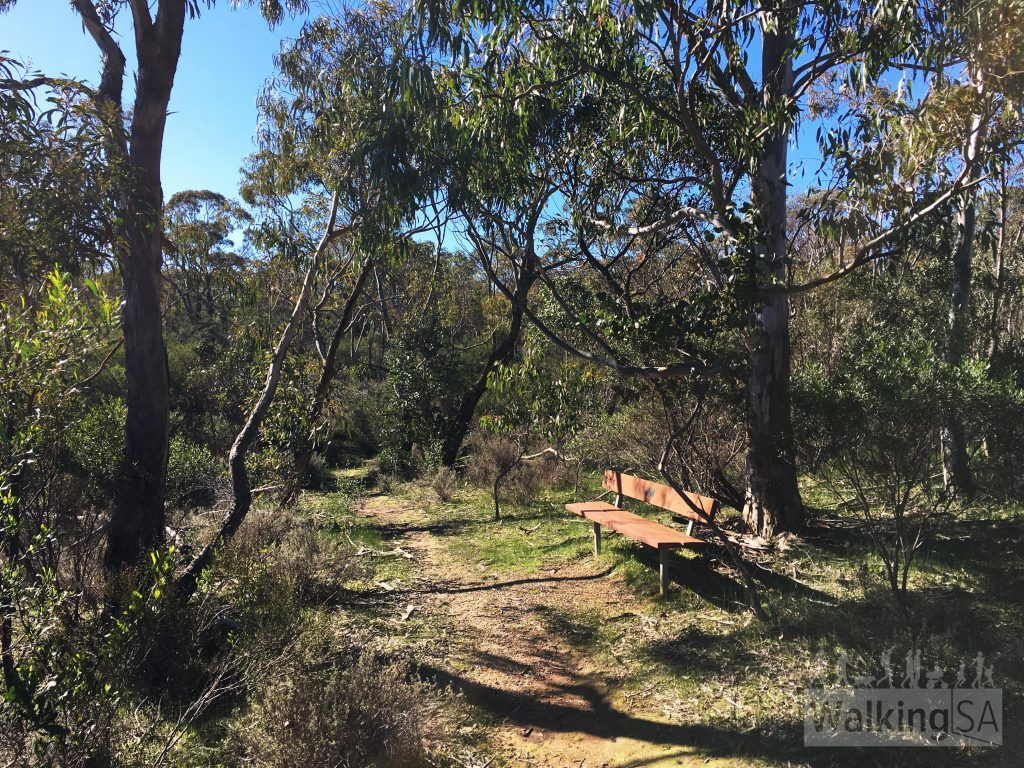 Nice place to sit, ha. On the Lizard Rock Nature Walk