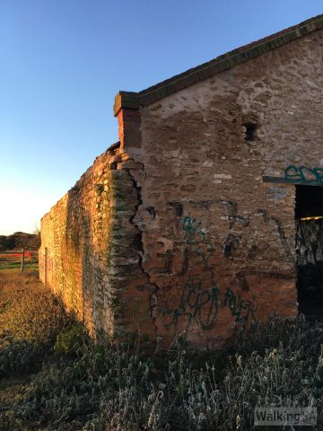 Old farming shed ruin on the Pingle Farm Trail