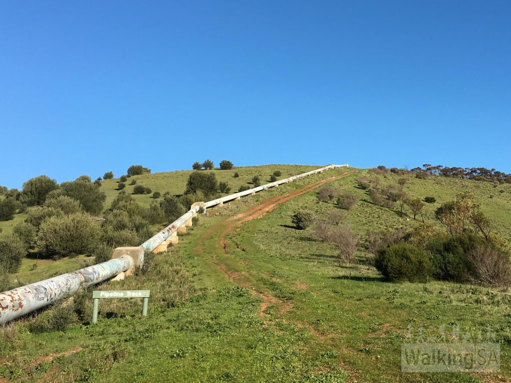 Walk uphill along the pipeline on the Pipeline Track, walking clockwise on the Old Noarlunga Hike