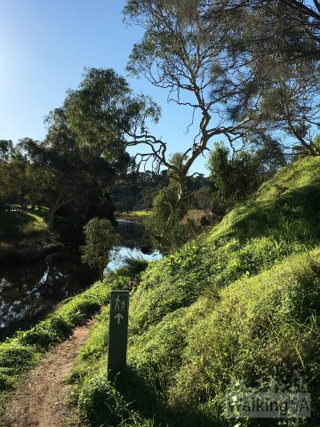 Walking trail beside the Onkaparinga River