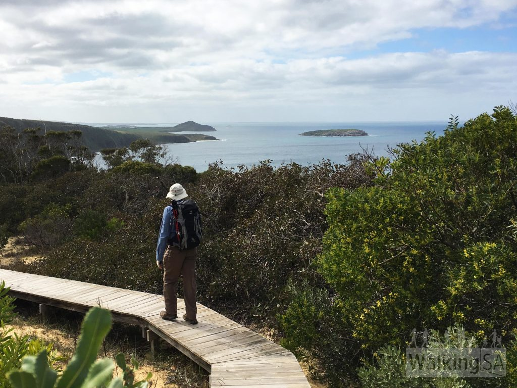 Glimpses of the Bluff and cliffs on the Heysen Trail, approaching the cliff lookout