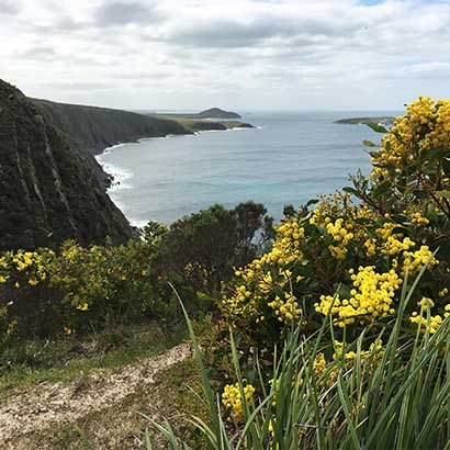 Waitpinga Cliffs to Kings Beach, Heysen Trail