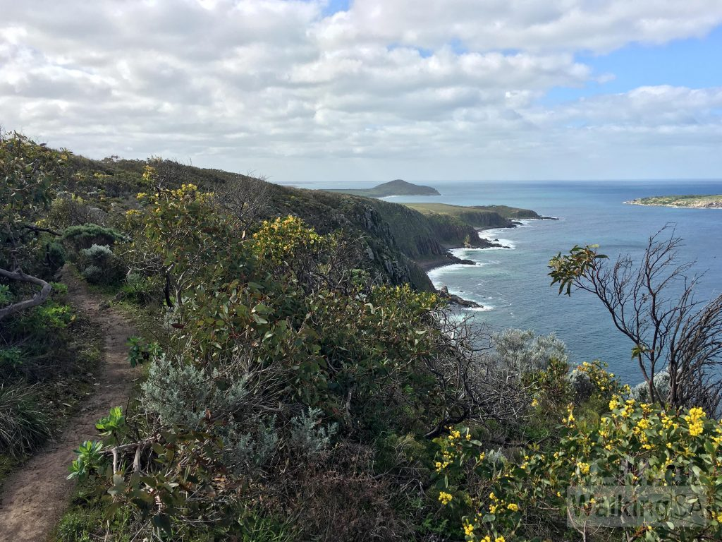Hiking along the Heysen Trail with Kings Head and The Bluff in view