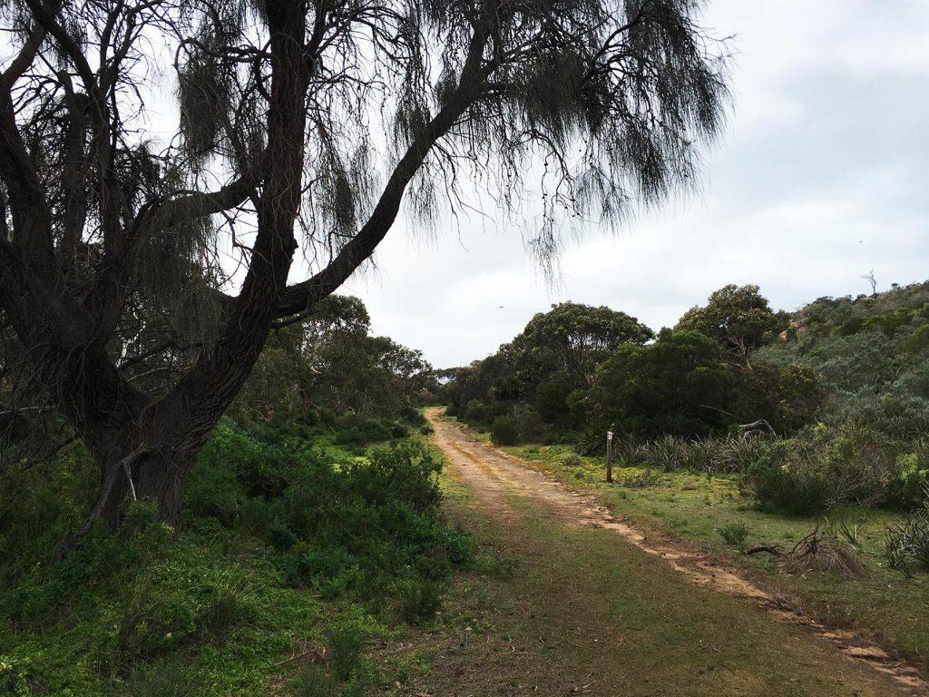 Ridgeway Hill Walking Trail, Newland Head