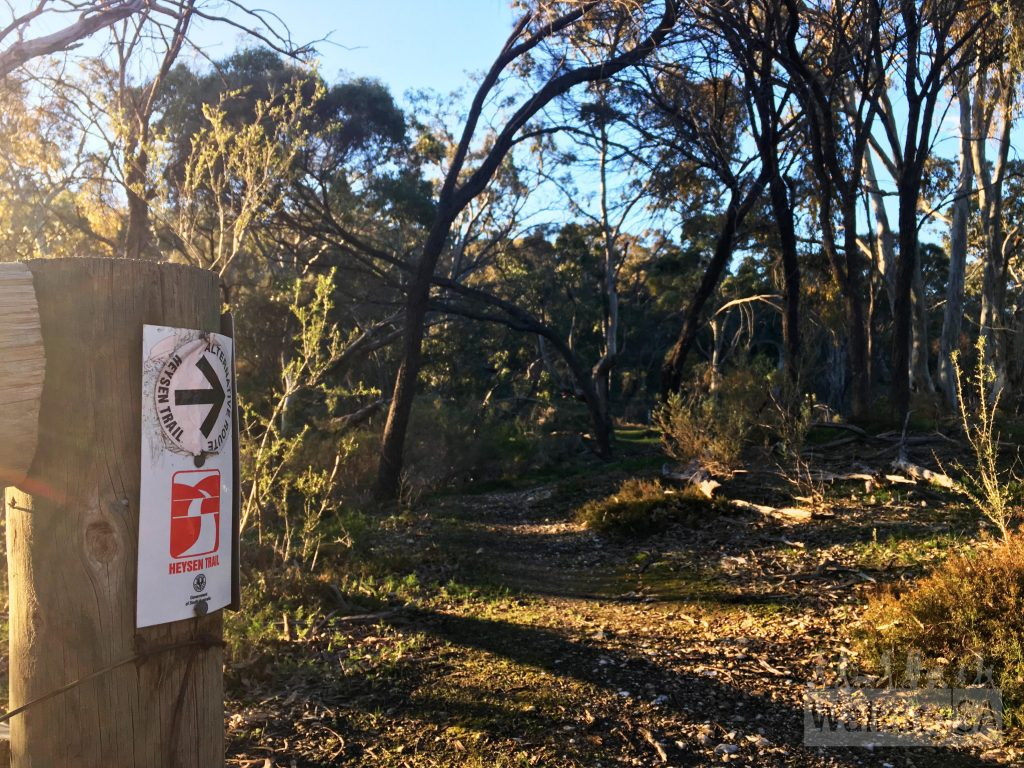 The Jenkins Scrub Walking Trail includes some of the Heysen Trail