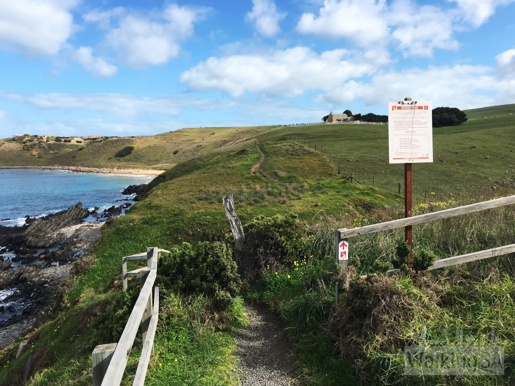 The path on the Heysen Trail from Kings Beach Road on to Kings Beach