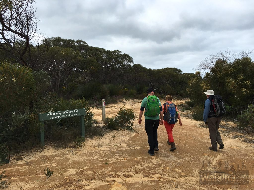 Junction of the Heysen Trail, the Ridgeway Hill Walking Trail and the Coastal Cliffs Walking Trail. The trails in Newland Head Conservation Park are well marked.