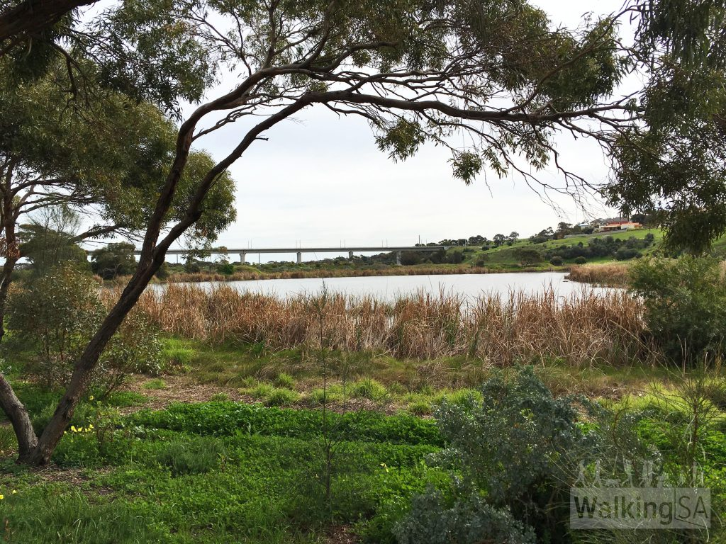 Views of wetlands on the Noarlunga Downs Wetland Trail