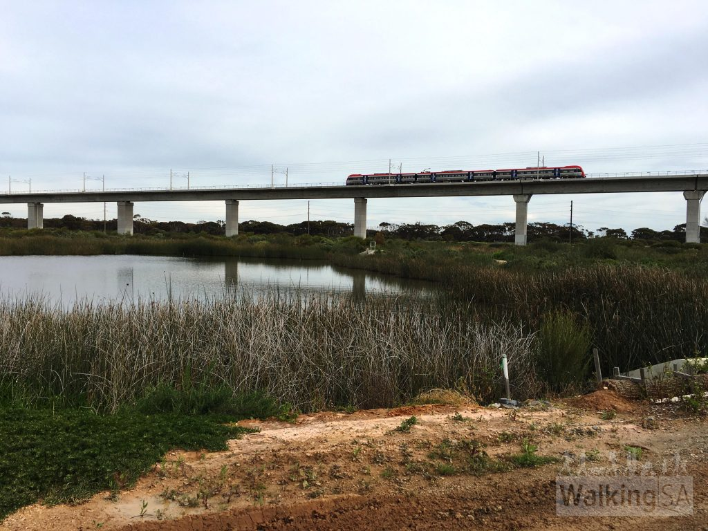 Views over the wetland sanctuary at the Noarlunga Downs Wetland Trail