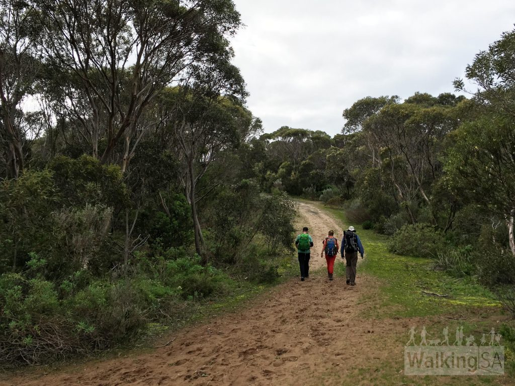 Walking along the Heysen Trail, the Ridgeway Hill Walking Trail and the Coastal Cliffs Walking Trail
