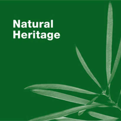 The Natural Heritage interpretive trail