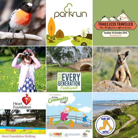 70-walk-events-in-october-as-part-of-walktobersa-high