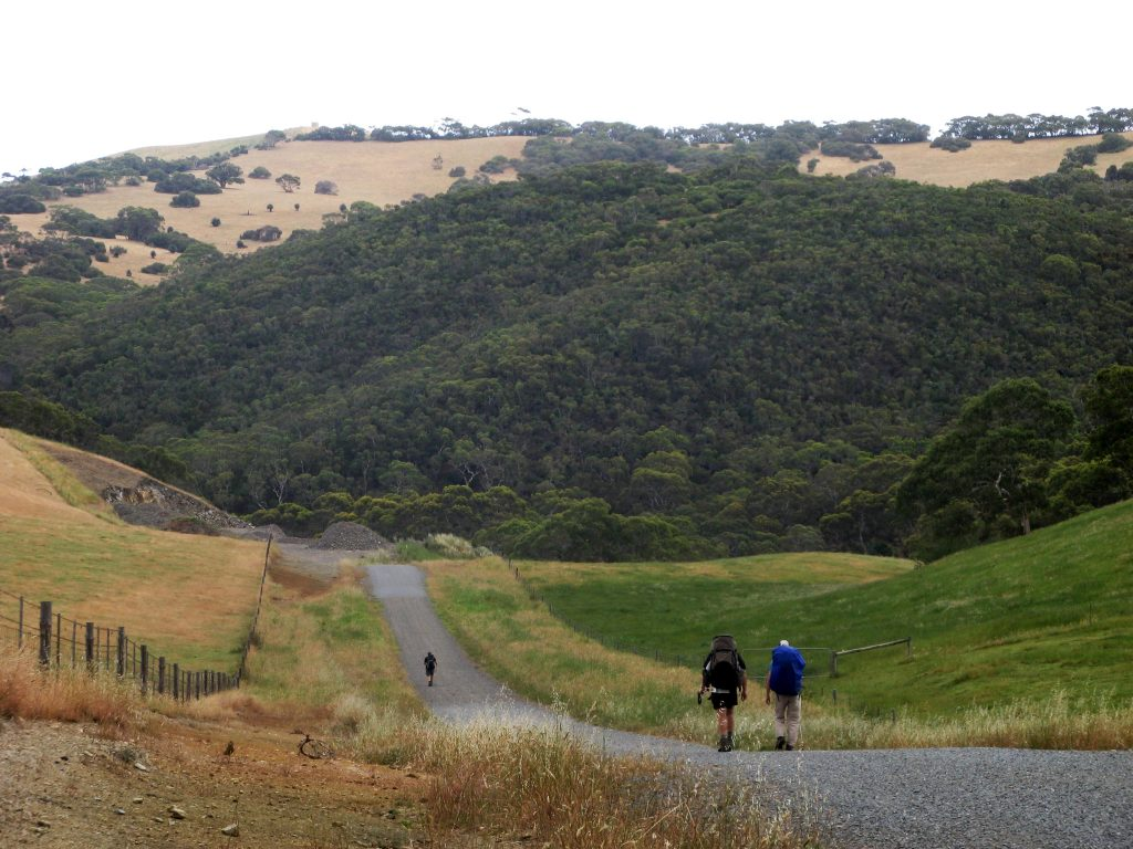 A short section of the Heysen Trail is along a remote country road