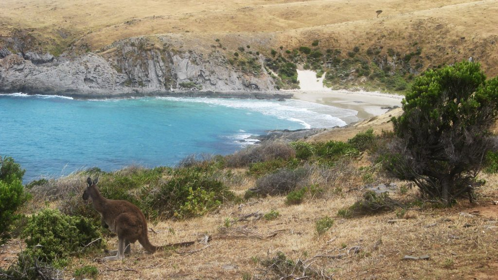 Blowhole Beach, Deep Creek Conservation Park