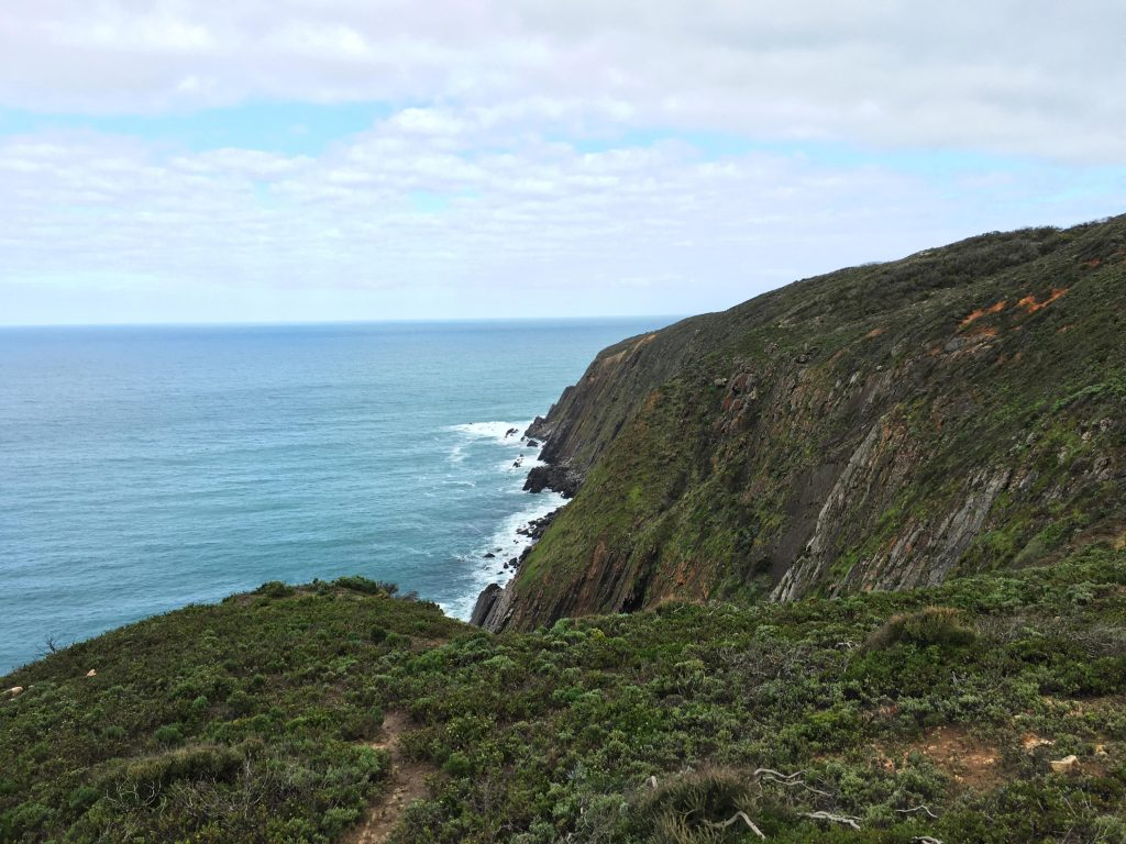 Cliffs on the Coastal Cliffs Walking Trail and Heysen Trail