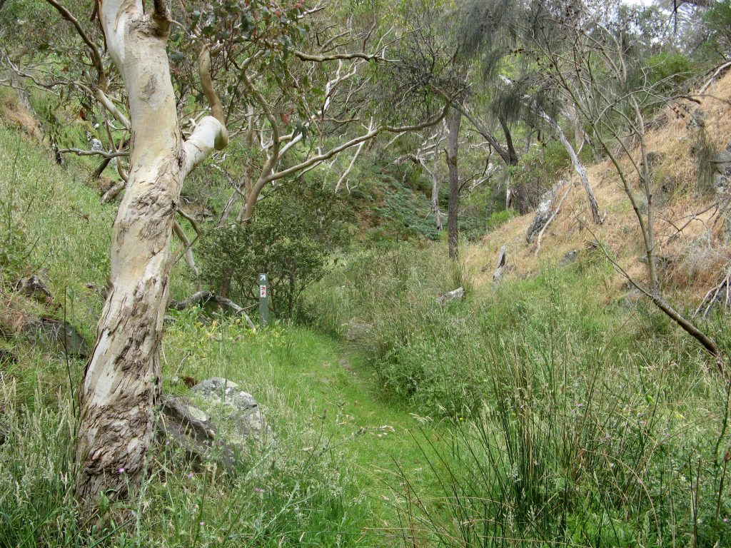 Heysen Trail through Deep Creek Conservation Park, near Aaron Creek
