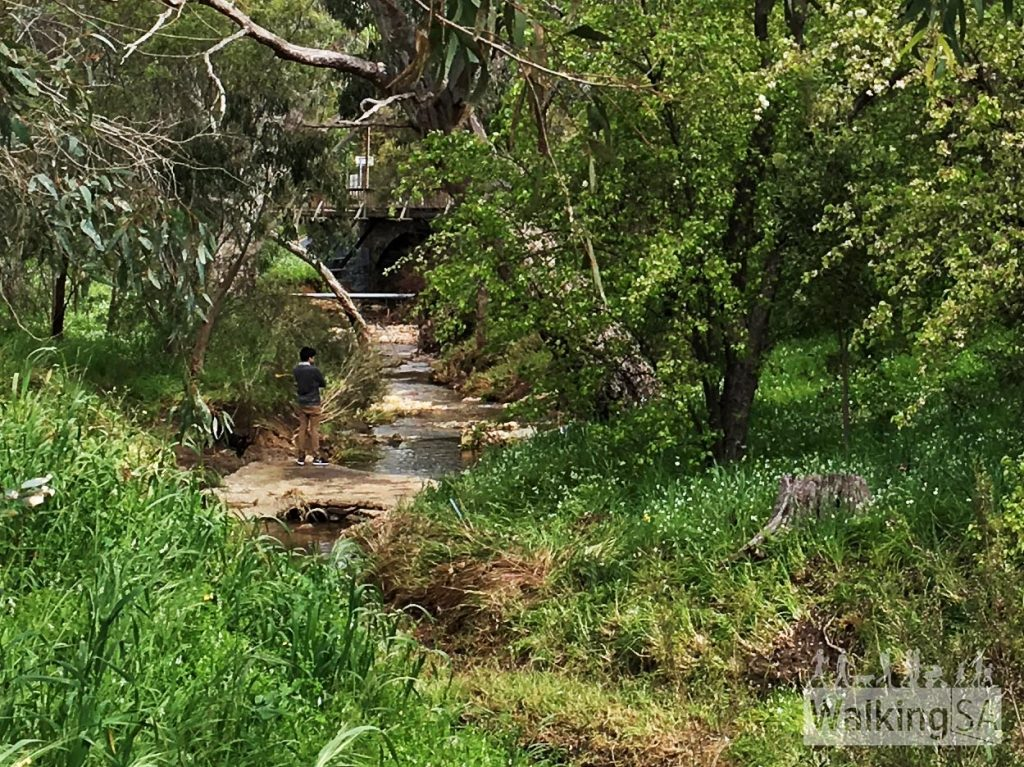 Sturt River flows through Blackwood Forest Recreation Park