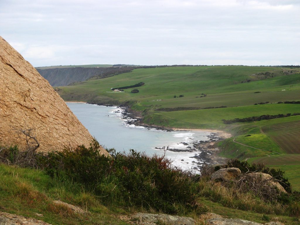 View of Petrel Cove from The Bluff