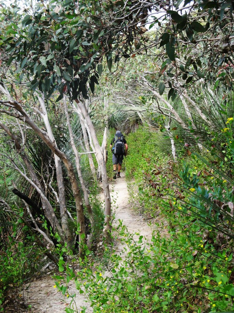 Walking along the Heysen Trail through Deep Creek