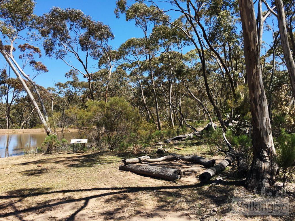 Campground at Eaglehawk Dam, Mt Remarkable National Park