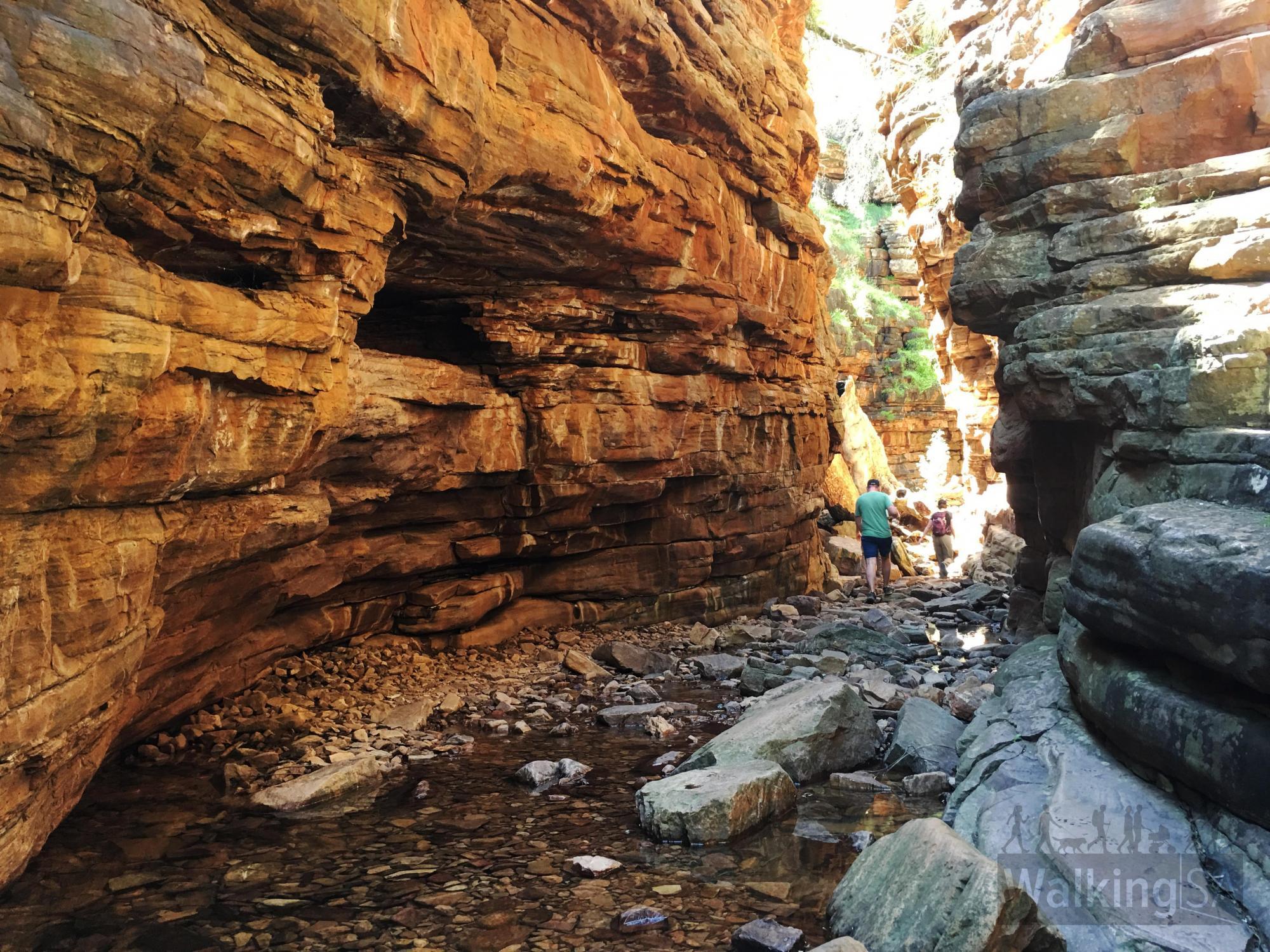 Gorge Circuit Hike | Walking SA