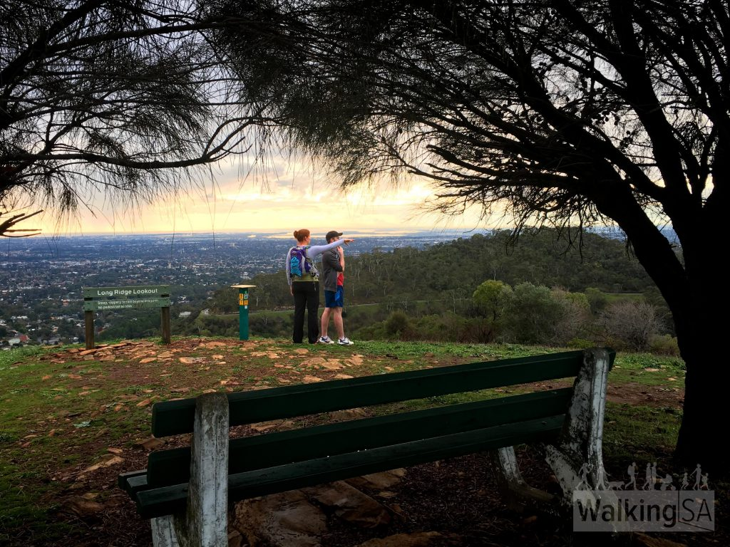 Sugarloaf Lookout