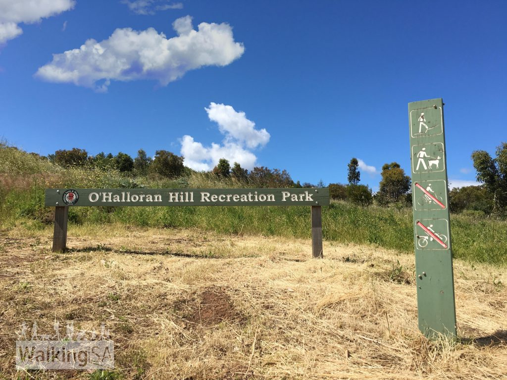 Walking, mountain biking, horse riding and dog walking (on leash) are all permissable in O'Halloran Hill Recreation Park. Some of the signs are old and prohibit mountain biking, but bikes are welcome