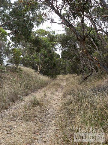 Nurragi Conservation Reserve Walking Trail