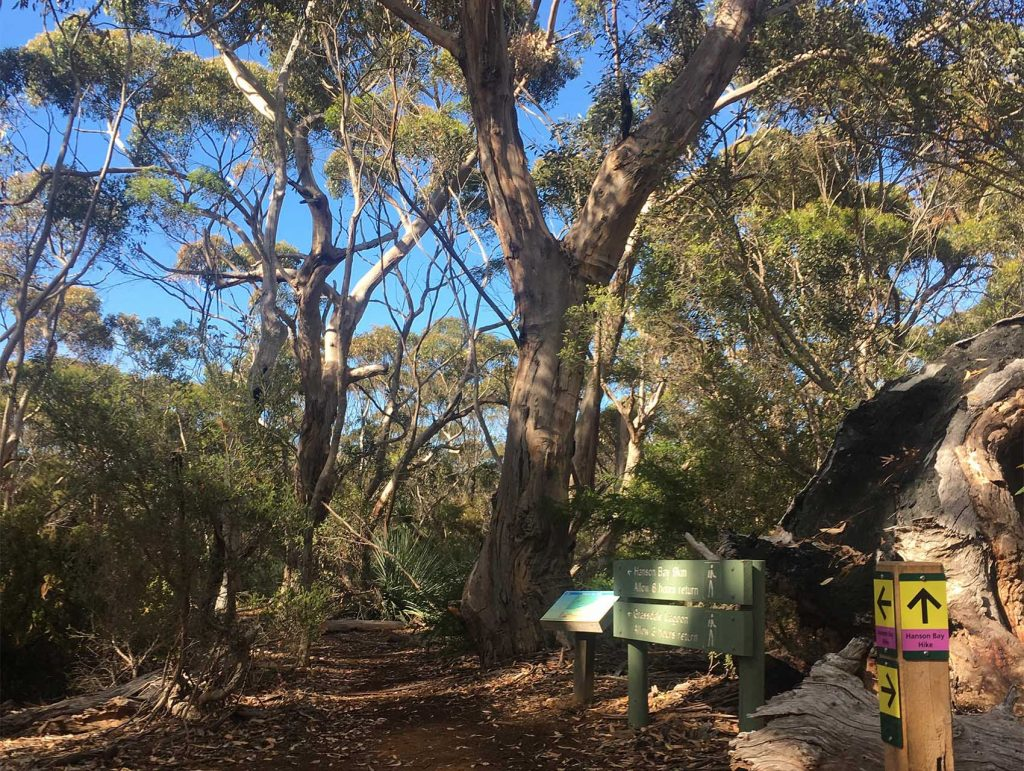 Day 5, Kelly Hill Section, Kangaroo Island Wilderness Trail