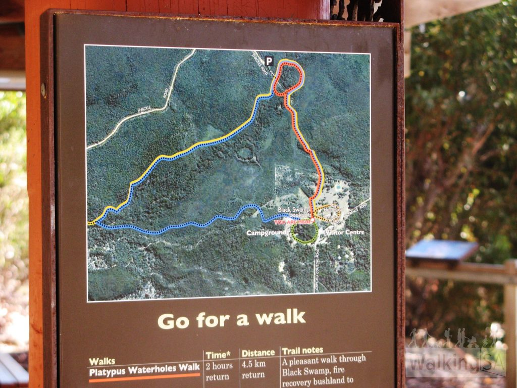 Information about hike options at the Black Swamp Lookout shelter
