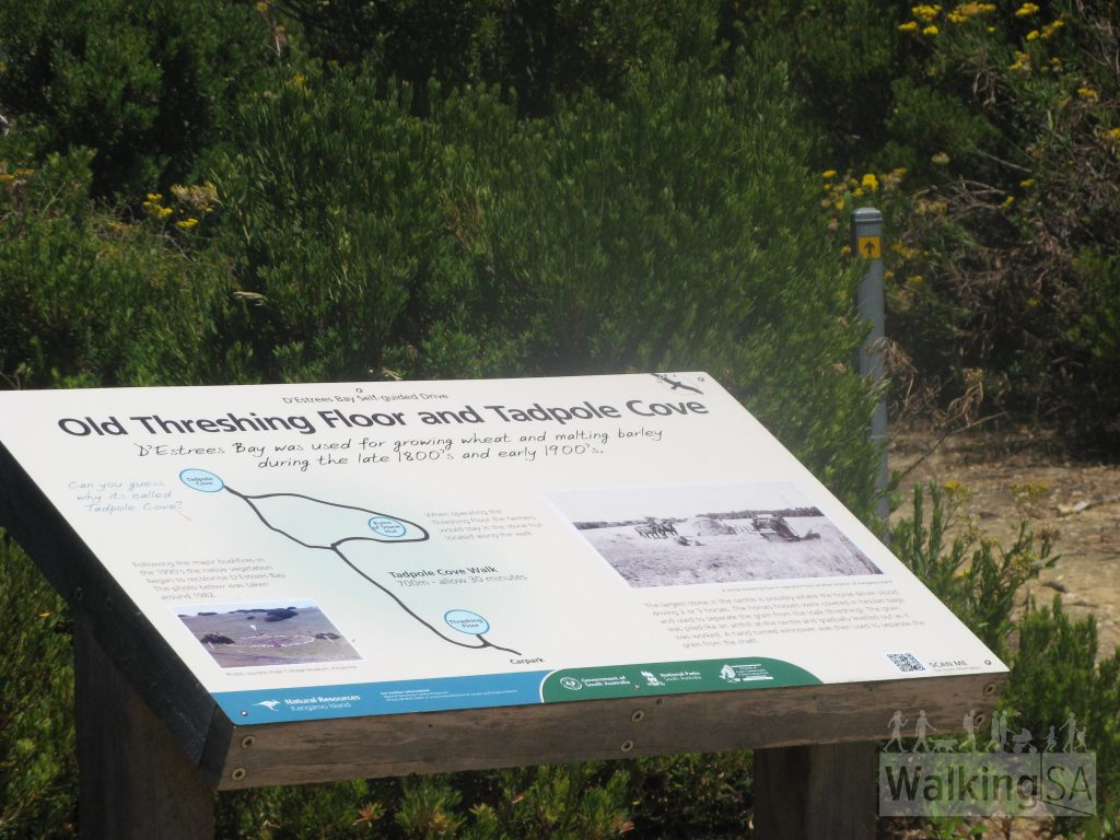 Intrepretive signage on the Tadpole Cove Walk which details the old threshing floor