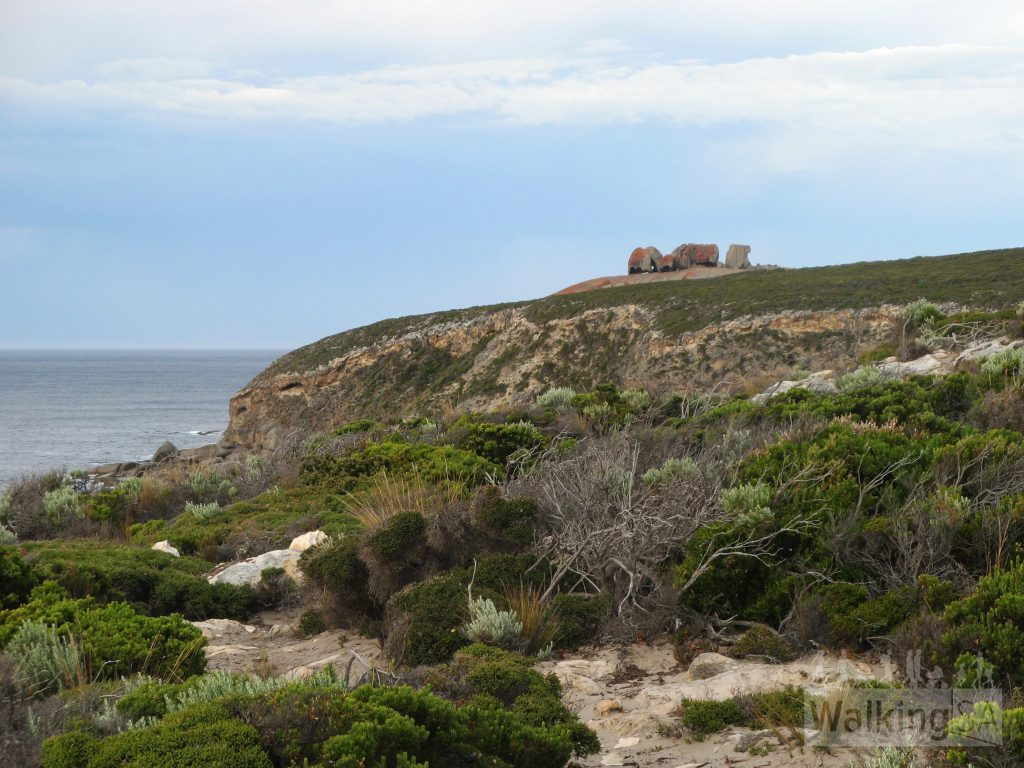 Looking back down the trail towards Remarkable Rocks