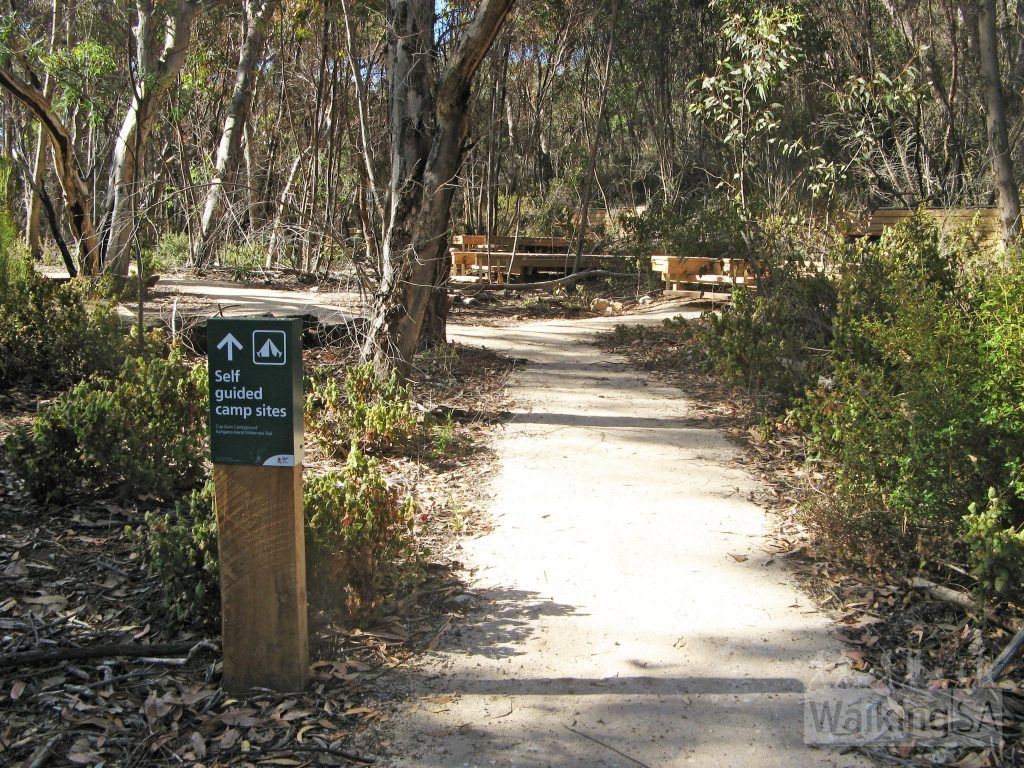 The independent hikers camp sites within Cup Gum Campground. There are 9 camp sites here for the up to 12 people who have booked onto the hike today. 5 are timber tent platforms, and 4 are gravel tent sites, all of various sizes