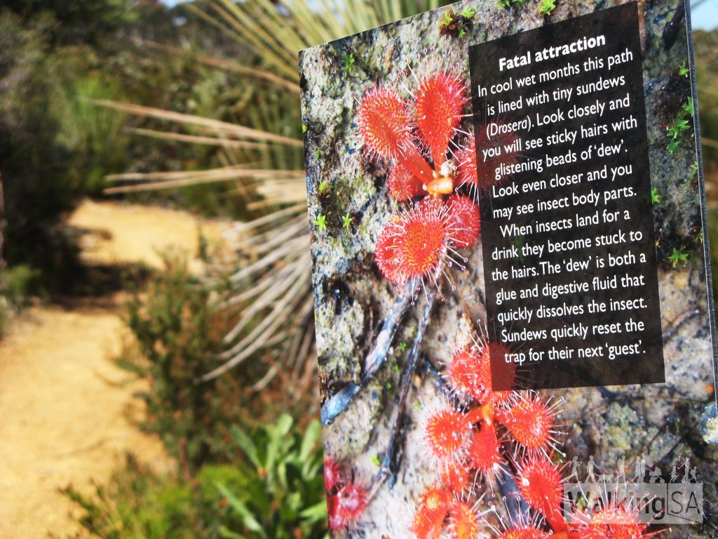 The interpretive signs on the Playpus Waterholes Walk are very interesting to read