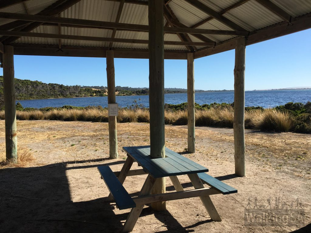 The picnic shelter at Independence Point. There is a box of maps located on a post here.