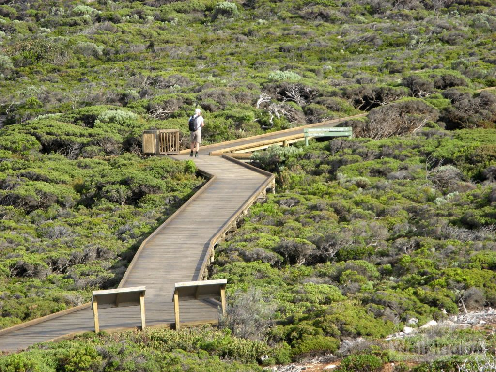 The wheelchair accessible boardwalk to Remarkable Rocks