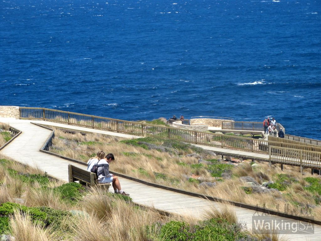 The boardwalks on the Admirals Arch Walk take you to viewing lookouts, then down stairs into Admirals Arch. Until the stone-walled lookout seen in this photo, the trail is wheelchair accessible. Seals can be seen along this boardwalk.