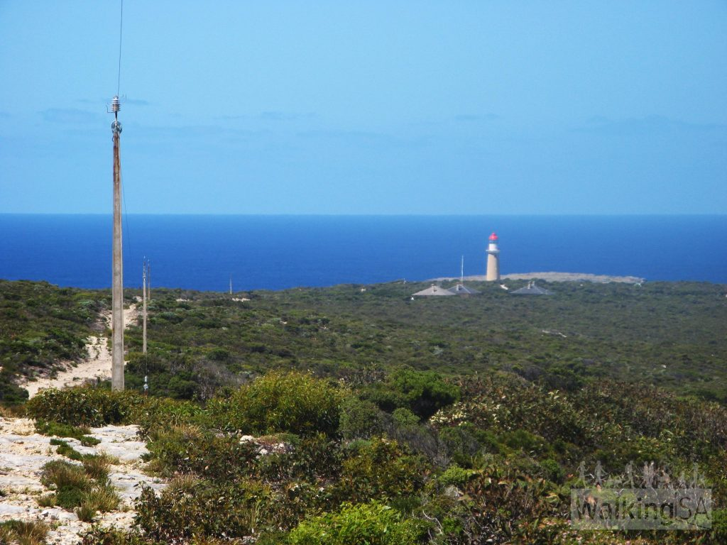 This is as close to Cape du Couedic lighthouse as the main trail goes. An optional return sidetrip of 9km goes to the lighthouse and Admirals Arch