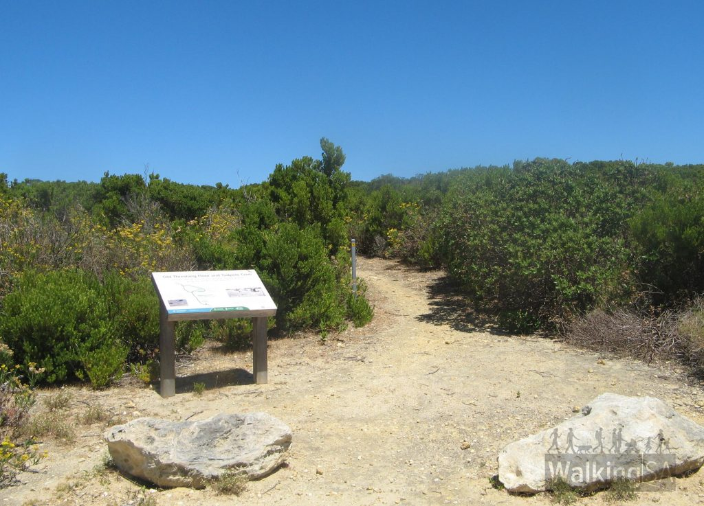 Trailhead of the Tadpole Cove Walk